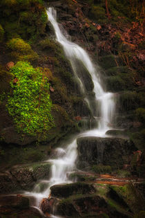 Small waterfalls at Melincourt Brook by Leighton Collins