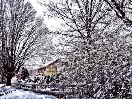 Sigsml-winterscene
