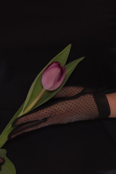 Blumen-ira-hand185-bearb