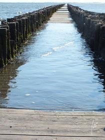 Ein Steg wie ein Leben/A footbridge like a life von Patti Kafurke