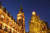 Hamburger Rathaus mit Weihnachtsbaum, Hamburg von Torsten Krüger