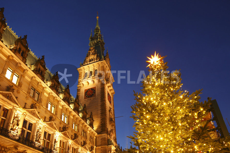 hamburger rathaus mit weihnachtsbaum hamburg fotografie als poster und kunstdruck von torsten. Black Bedroom Furniture Sets. Home Design Ideas