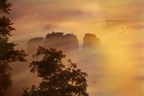 Morgen an den Gansfelsen by sternbild