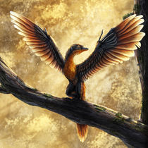 Archaeopteryx Lithographica Commission von Rushelle Kucala