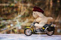 Der Biker by Claudia Evans