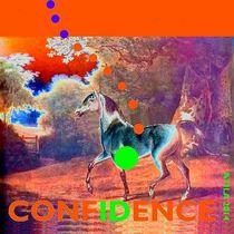 Confidence Selbstbewußtsein Pferd von Britta Franke
