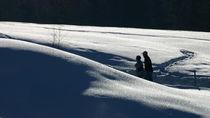endlich Winter by frakn
