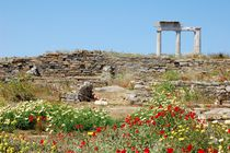 Ancient marble ruins and wild flowers von Yuri Hope