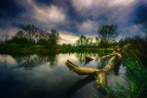 Wild water....... von Stefan Kierek