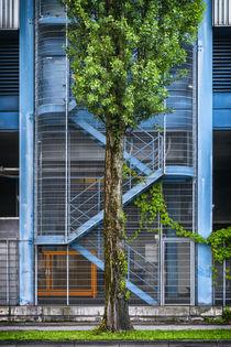 Stairways 822916 by Mario Fichtner