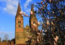 Stiftskirche Bücken im Frühling! von Heinz E. Hornecker