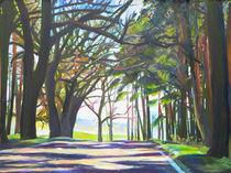 Straße durch den Wald von Renée König