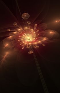 Night Bloom von Svetlana Nikolova