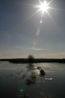Hochwasser by frakn