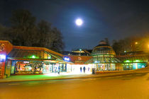 Full Moon Above Norwich Castle Mall by Vincent J. Newman