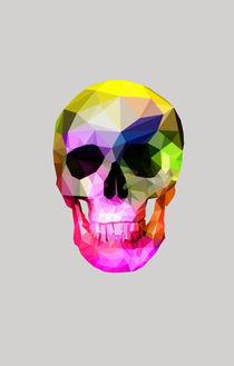 Rainbow Skull by dinodesigns