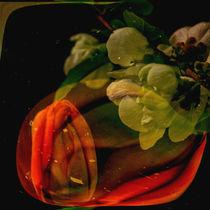 abstrakt im Quadrat -Tulpe mit Quittenblüte von Chris Berger