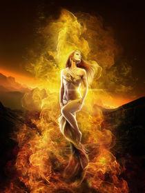 Phoenix Rising von Ana Cruz