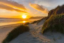 Sonnenuntergang in St Kilda, Dunedin, Neuseeland von globusbummler