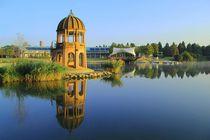 Spätsommermorgen Seepark Freiburg von Patrick Lohmüller