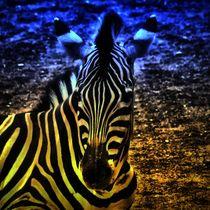 Fantasy Zebra von kattobello