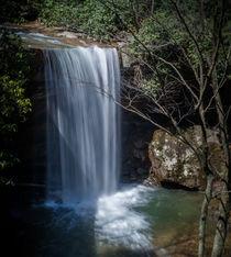 Cucumber Falls by Tim Seward