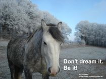 Don't dream it, be it! by Andrea Köhler