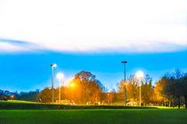 Skate Park at Dusk, Eaton Park, U.K by Vincent J. Newman