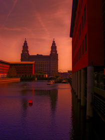 Liver Building from the Princes Dock von John Wain