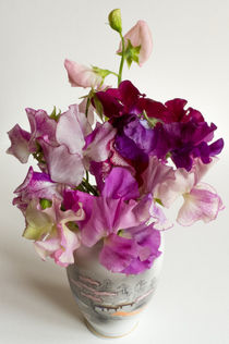 Sweet Peas von David Bishop