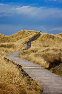 Dünenpfad - Insel Amrum by AD DESIGN Photo + PhotoArt