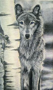 Wolf / Winterwolf von Kirsten Helmke