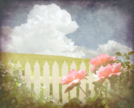 Vintage-rose-picket-fence-background1-flip