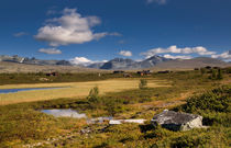 Rondane national park with mountains and swamp von Bastian Linder