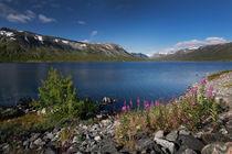 Deep blue lake Breiddalsvatnet in Norway by Bastian Linder