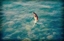 Adrift by Karen Black