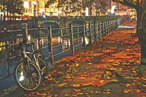Berlin by Night by Karen Black