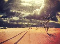 Desert Apocalypse by Karen Black