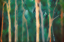 Misty Australian Forest by Karen Black
