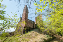 Ruine Ramburg 48 von Erhard Hess