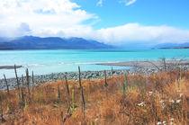 Turquoise Lake von Karen Black