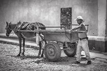 Cuban worker in Trinidad by Bastian Linder