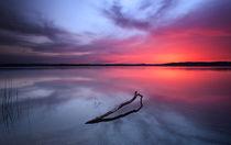 Starnberger Lake at sunset by Bastian Linder