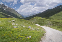 Hiking track in the Alps with mountains in Fimbatal from Ischgl to Heidelberger Hut von Bastian Linder