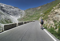 Mountainbiking at Passo dello Stelvio von Bastian Linder