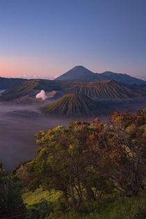 Volcano Mt. Bromo in sunrise von Bastian Linder