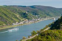 Mittelrhein bei Kaub 16 by Erhard Hess