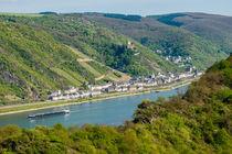Mittelrhein bei Kaub 22 von Erhard Hess