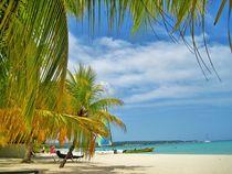 Jamaika von assy