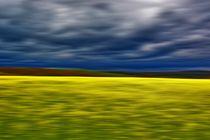 Spring #MMXVII 01 von Frank Voß